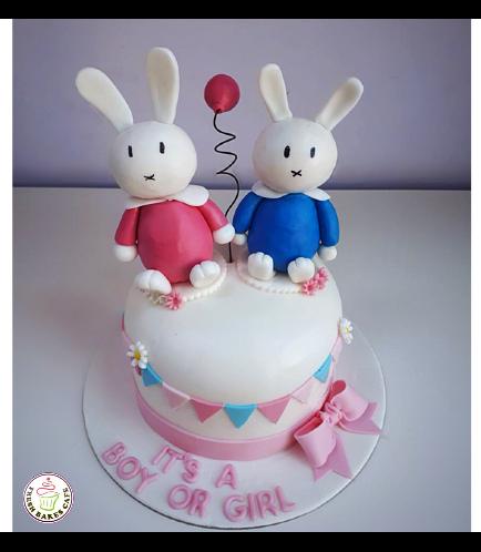 Baby Gender Reveal Themed Cake 08