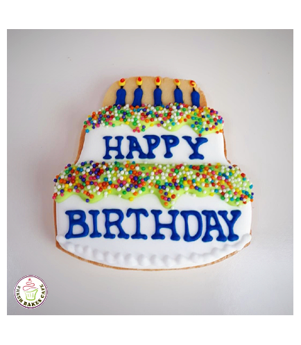 Birthday Themed Cookies 5