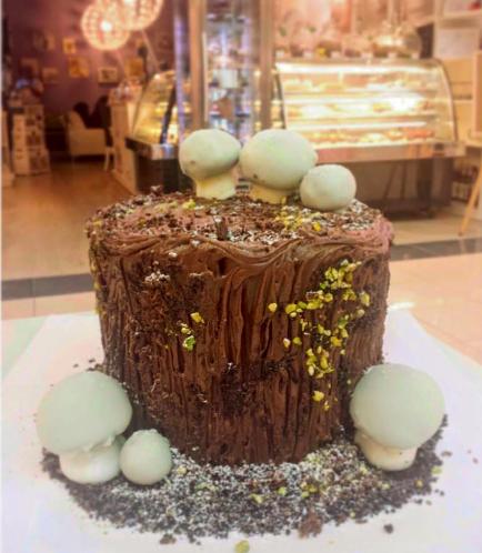 Cake - Dessert - Yule Log Cake 02