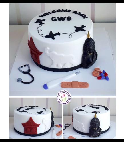 Doctor & Travel Themed Cake