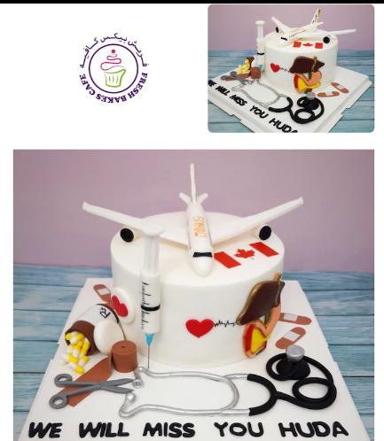 Doctor & Travel Themed Cake 02