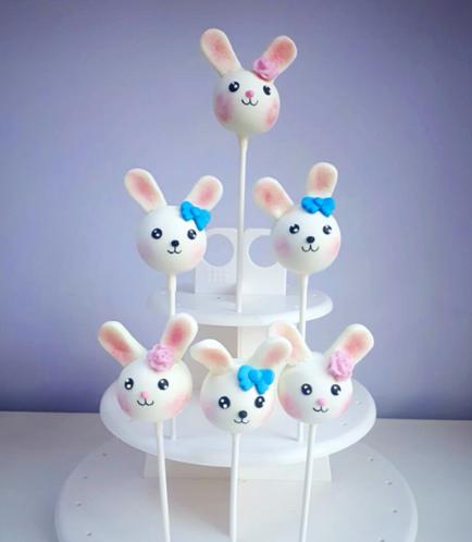 Rabbit Themed Cake Pops 1