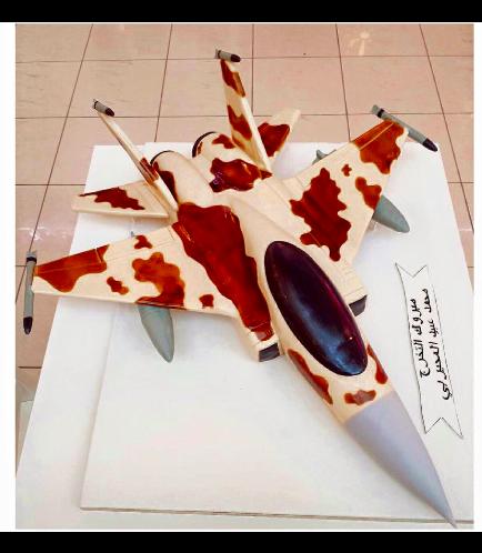 F15 Themed Cake 1