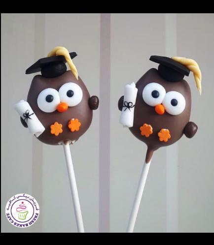 Cake Pops - Owl
