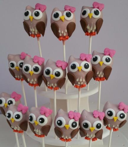 Owl Themed Cake Pops 1