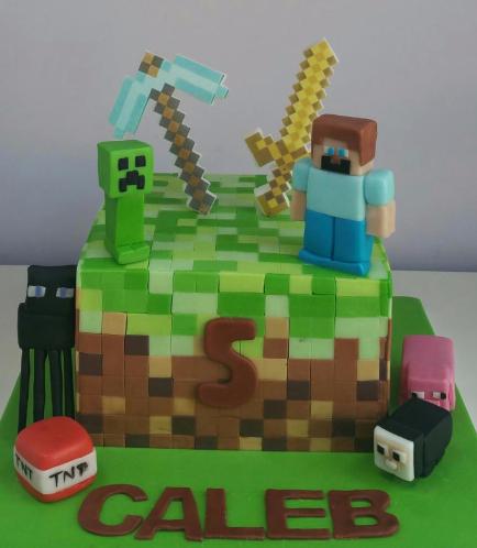Minecraft Themed Cake 20