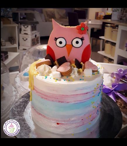 Owl Themed Cake - 2D Cake Topper - 1 Tier 05