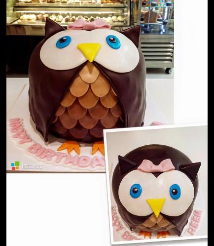 Owl Themed Cake - 3D Cake
