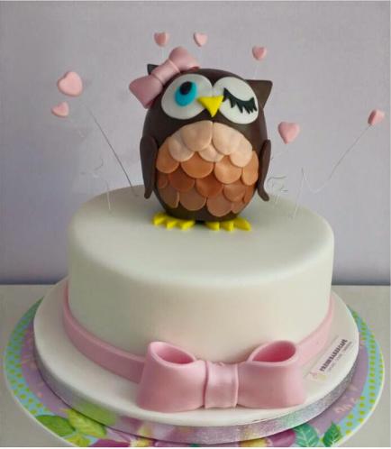 Owl Themed Cake 07a