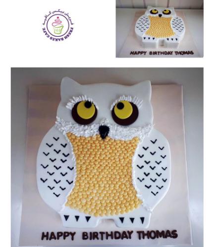 Owl Themed Cake - 2D Cake