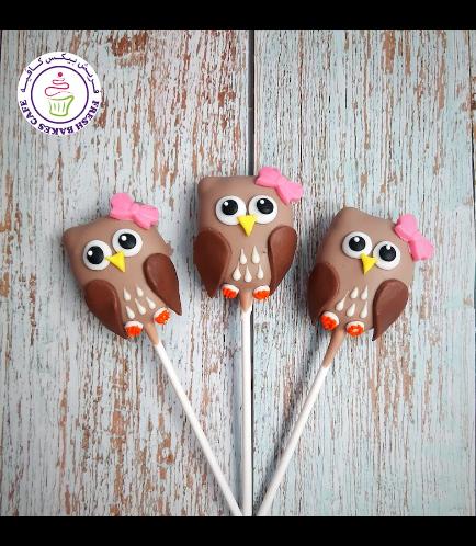 Owl Themed Cake Pops 02