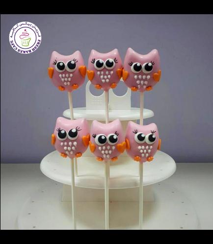 Owl Themed Cake Pops 01