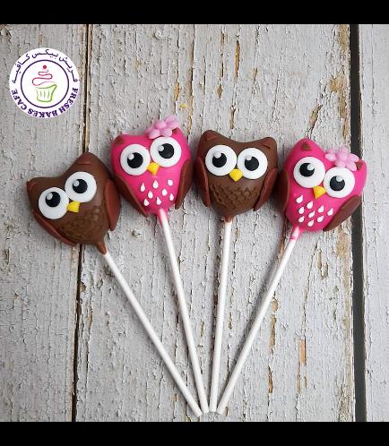 Owl Themed Cake Pops 04