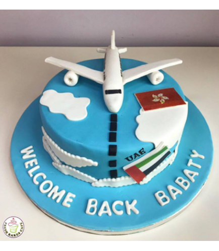 Cake - Airplane - 3D Cake Topper & Flags 01
