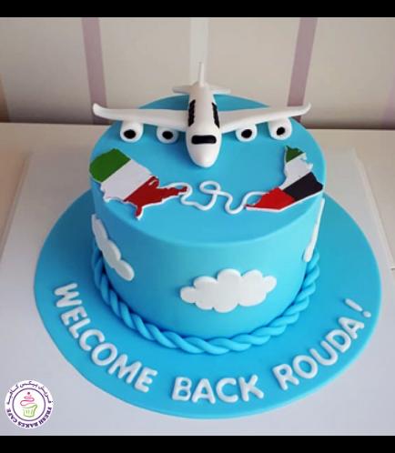Cake - Airplane - 3D Cake Topper & Maps - Fondant Cake 01b